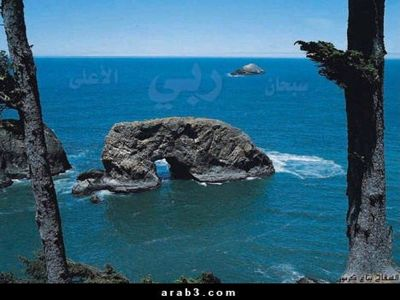 Islamic Miracle Picture - A Rock in Sajdah Position